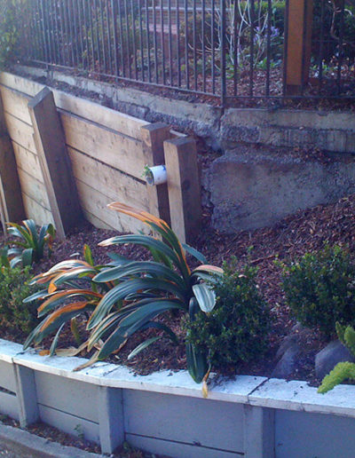 Retaining Wall, Mill Valley - before